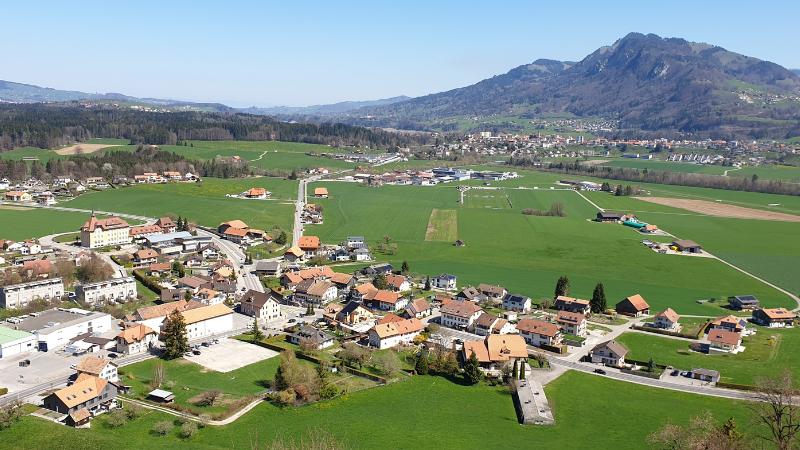 Introducing Alpha Vet Tech - Switzerland Sàrl!